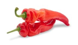 spice_peppers_XSmall